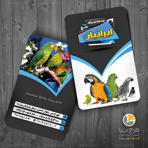 کارت ویزیت پرنده فروشی